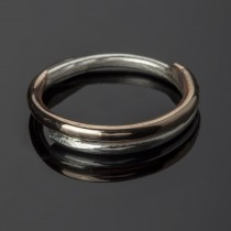 silver bronze ring